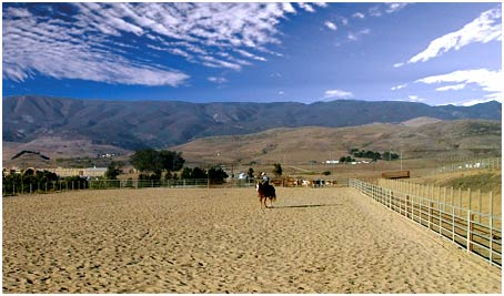 Central Coast Horse Boarding and Training riding arenas