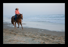 Central Coast Horse Boarding and Training San Luis Obispo