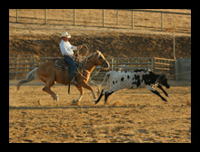 Roping chutes available